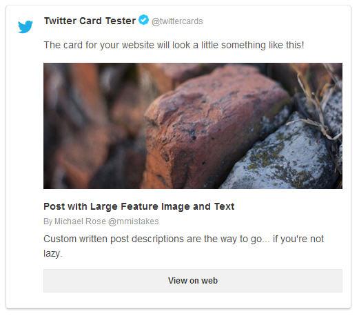 Twitter Card summary large image screenshot